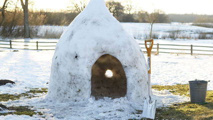 Londoners hoping for enough snow to build homes