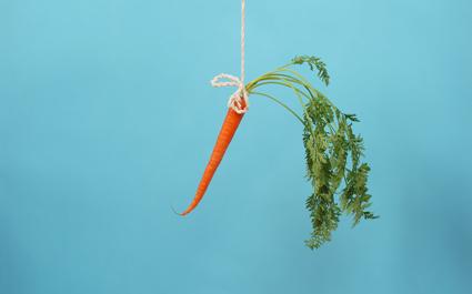 carrot425