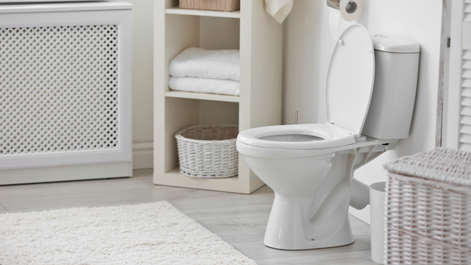 Five Ways To Put Off Going To The Toilet