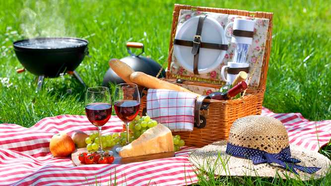 The middle class guide to ruining a picnic